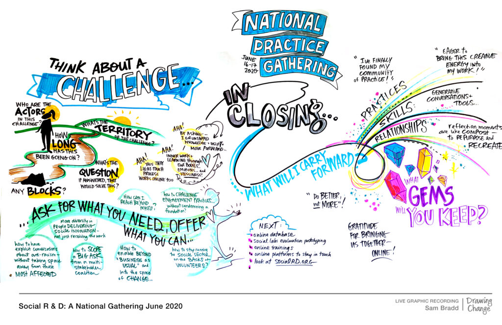 Challenges and next steps: SI Canada Graphic Image from the Social R&D National Gathering in June 2020